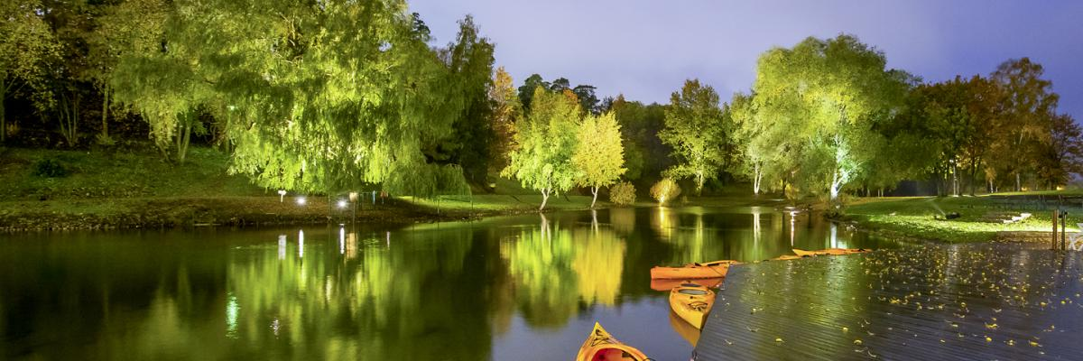 Kayaks in the water, forest in the background