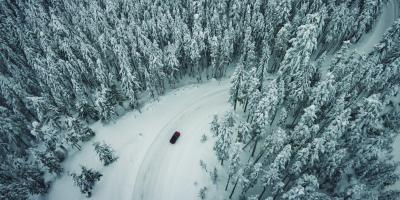car driving among snowy trees