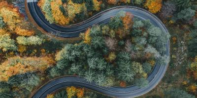 drone footage from above of curvy road among colorful trees