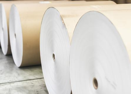 Spools of paper rolls lined up for printing press