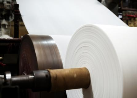 paper mill; white paper
