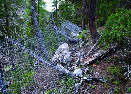 Safety net installed in forest above Ova Spin