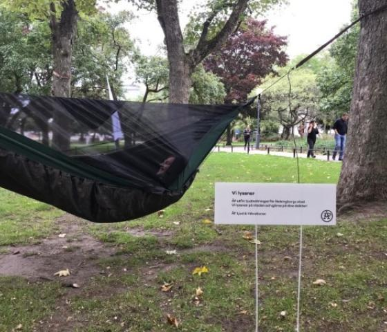A hammock hung between trees in a park with a white sign next to it.
